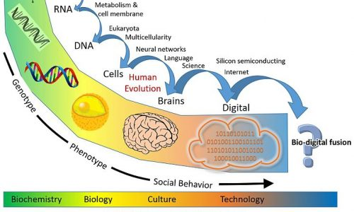 Singolarità Tecnologica