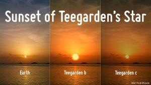Due Nuovi Pianeti nella Fascia di Abitabilita' della Stella Teegarden