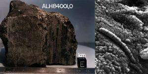 ALLAN HILLS 84001- ALH 84001, Meteorite Contenente tracce di Vita?