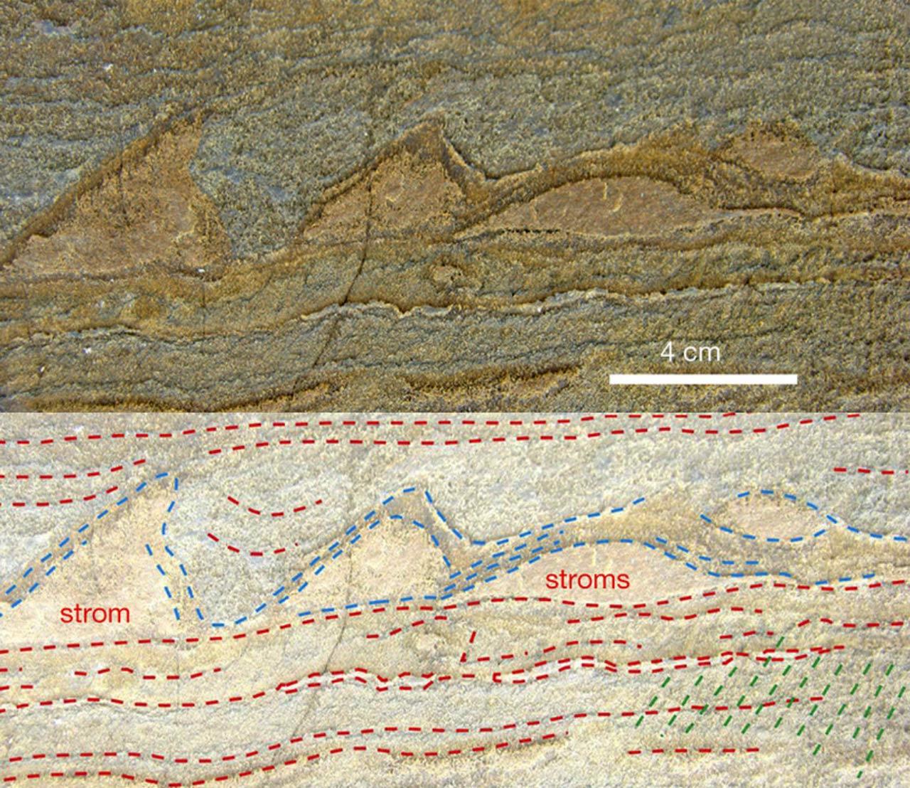 Scioglimento dei Ghiacci e Rinvenimenti Fossili