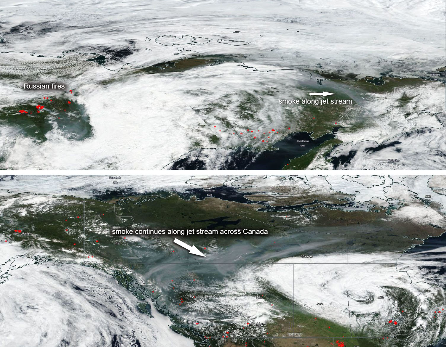 Siberia in Fiamme – Una Catastrofe Ecologica
